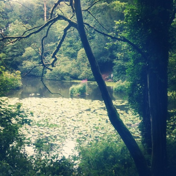 An Instagram! Abbot's Pool in Bristol.  Good for fishing, apparently.