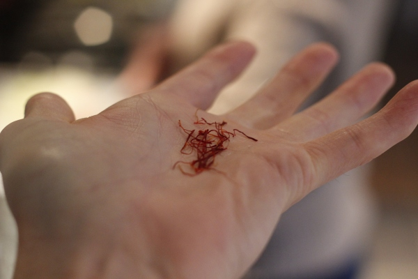 These little strands of saffron are magical!