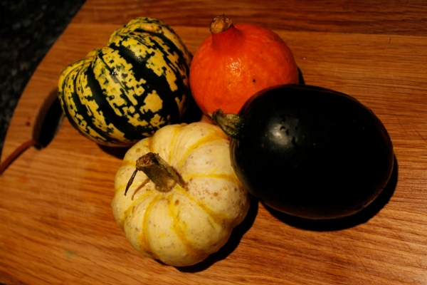Clockwise from bottom: Mini Tiger Striped Pumpkin, Harlequin, Onion (Red Kuri) and Gem squash (we think!)