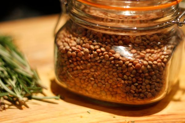 Brown lentils are surprisingly photogenic! Photobombed by rosemary from another recipe...