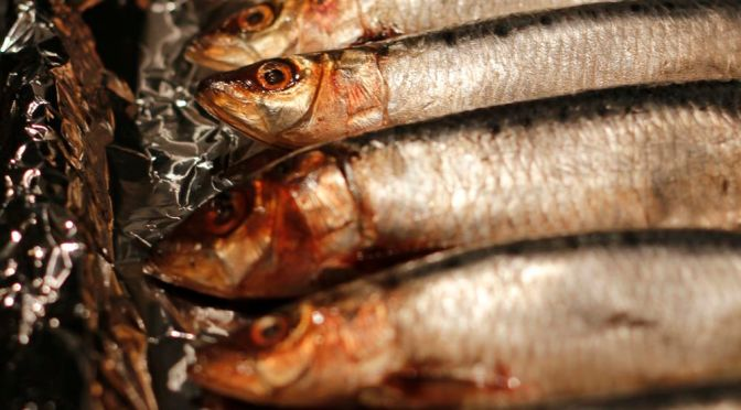 Simple Grilled Sardines